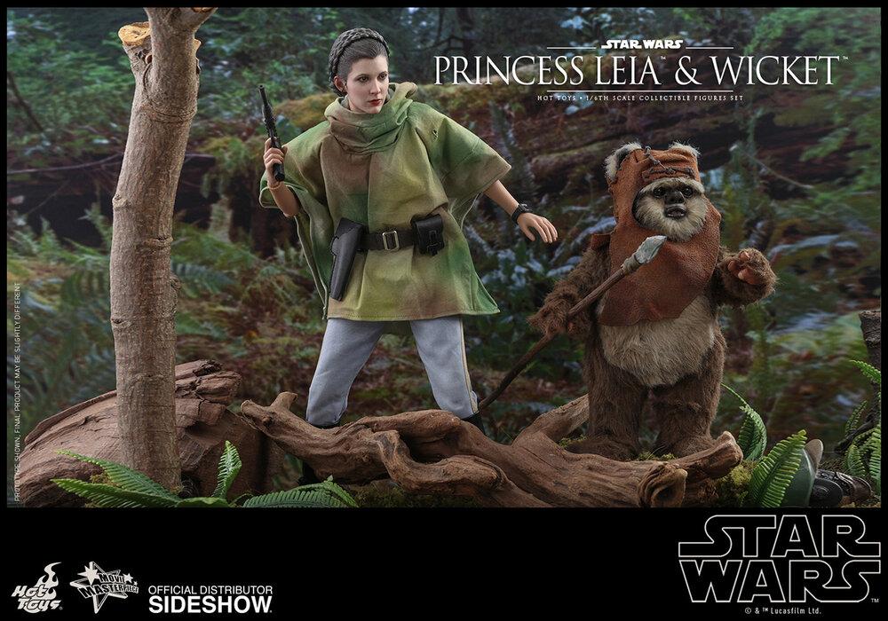princess-leia-wicket_star-wars_gallery_5d5708c7c2d41.jpg