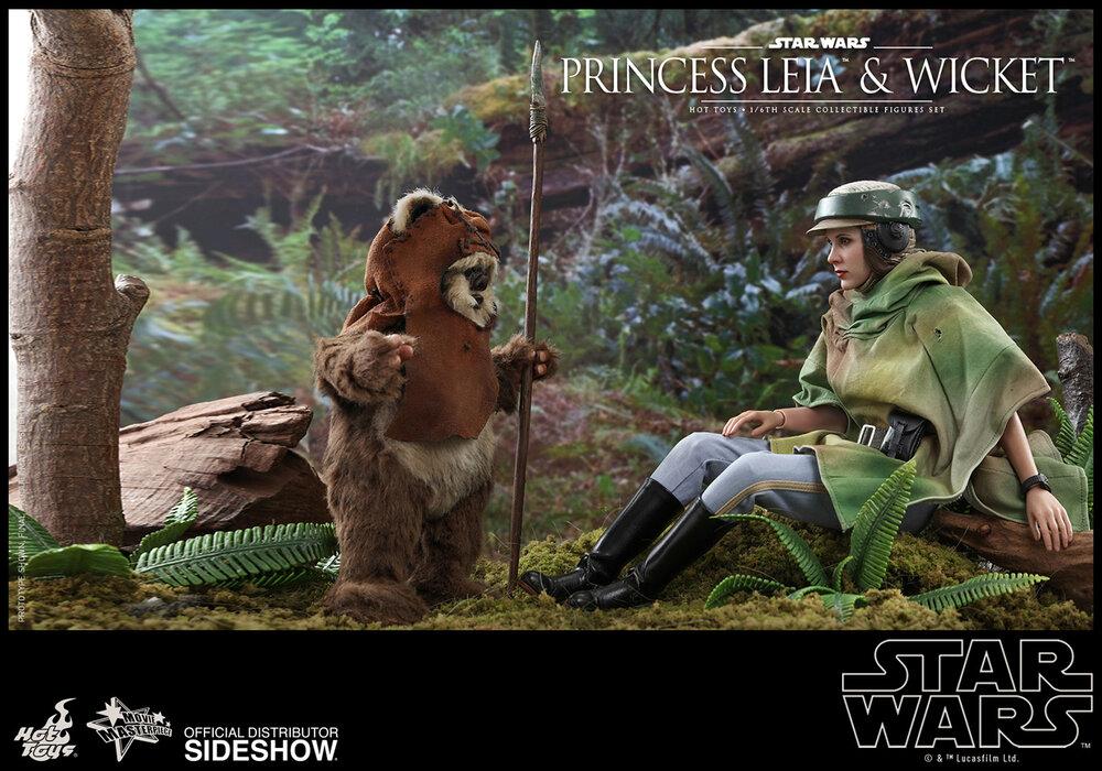 princess-leia-wicket_star-wars_gallery_5d5708c89f693.jpg