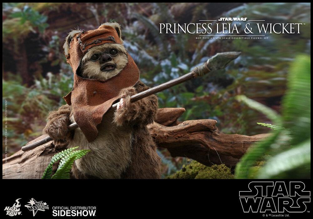 princess-leia-wicket_star-wars_gallery_5d5708c934eae.jpg