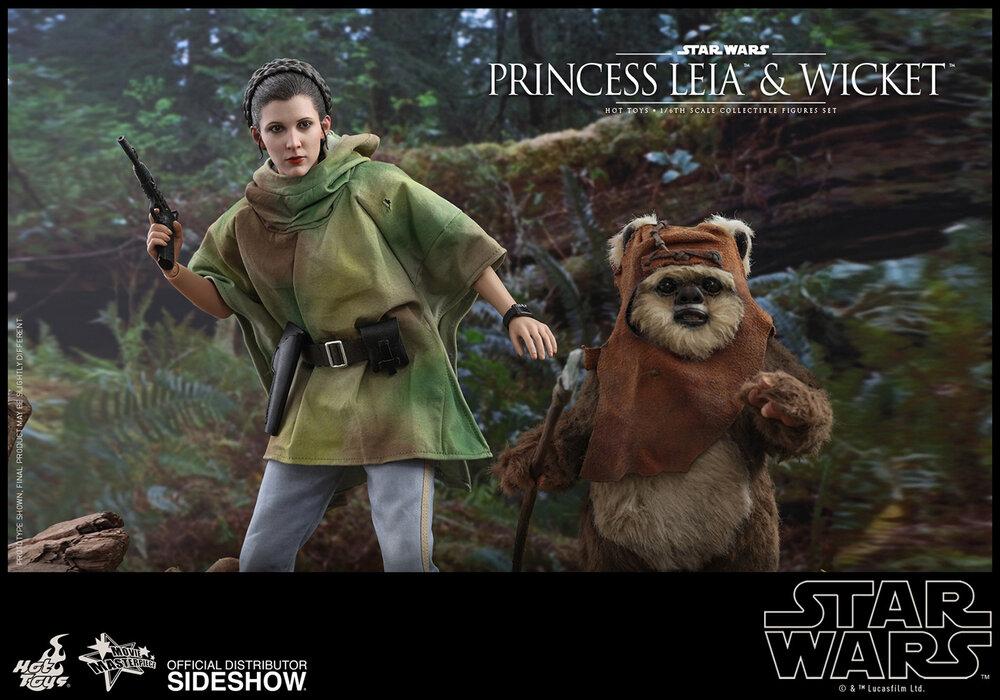 princess-leia-wicket_star-wars_gallery_5d5708c7740c6.jpg