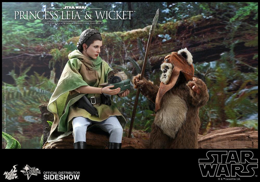 princess-leia-wicket_star-wars_gallery_5d5708c72554d.jpg