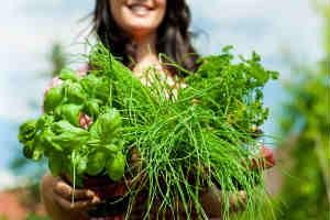 herbs-woman.jpg