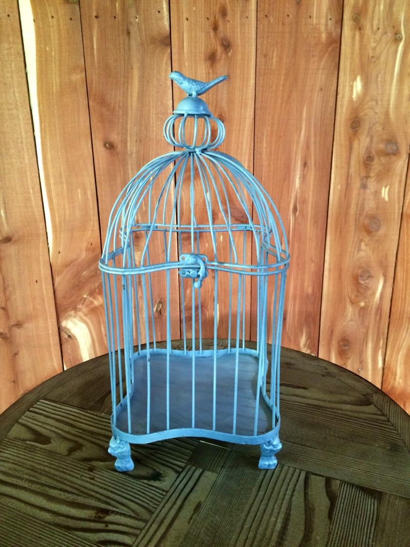 #12 - Blue Birdcage