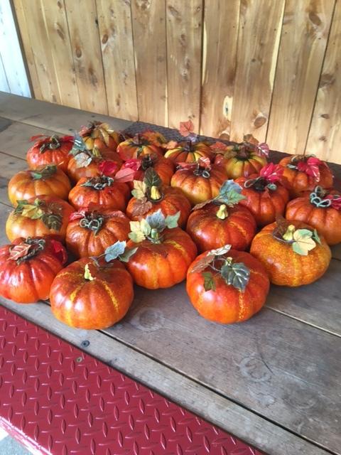 #170 - Pumpkins