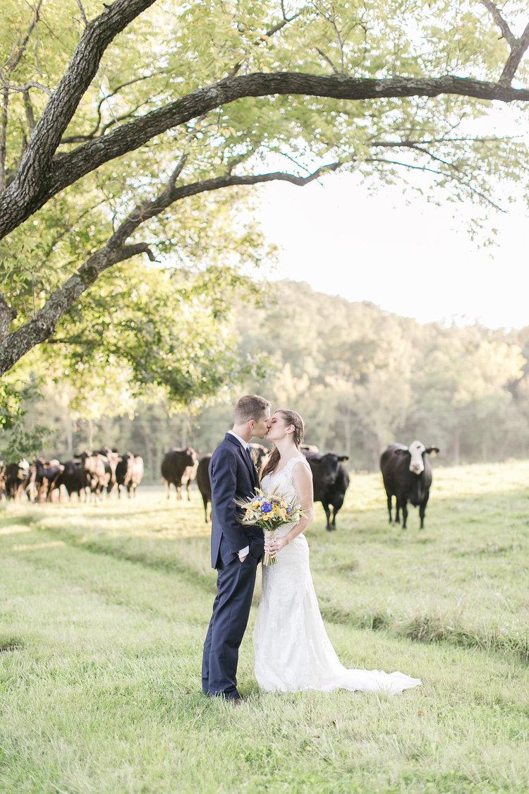 Rachael Houser Photo - Farm Weddings in St. Louis
