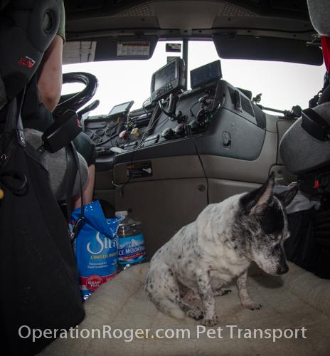 Operation_Roger_BeBe_052614-25.jpg