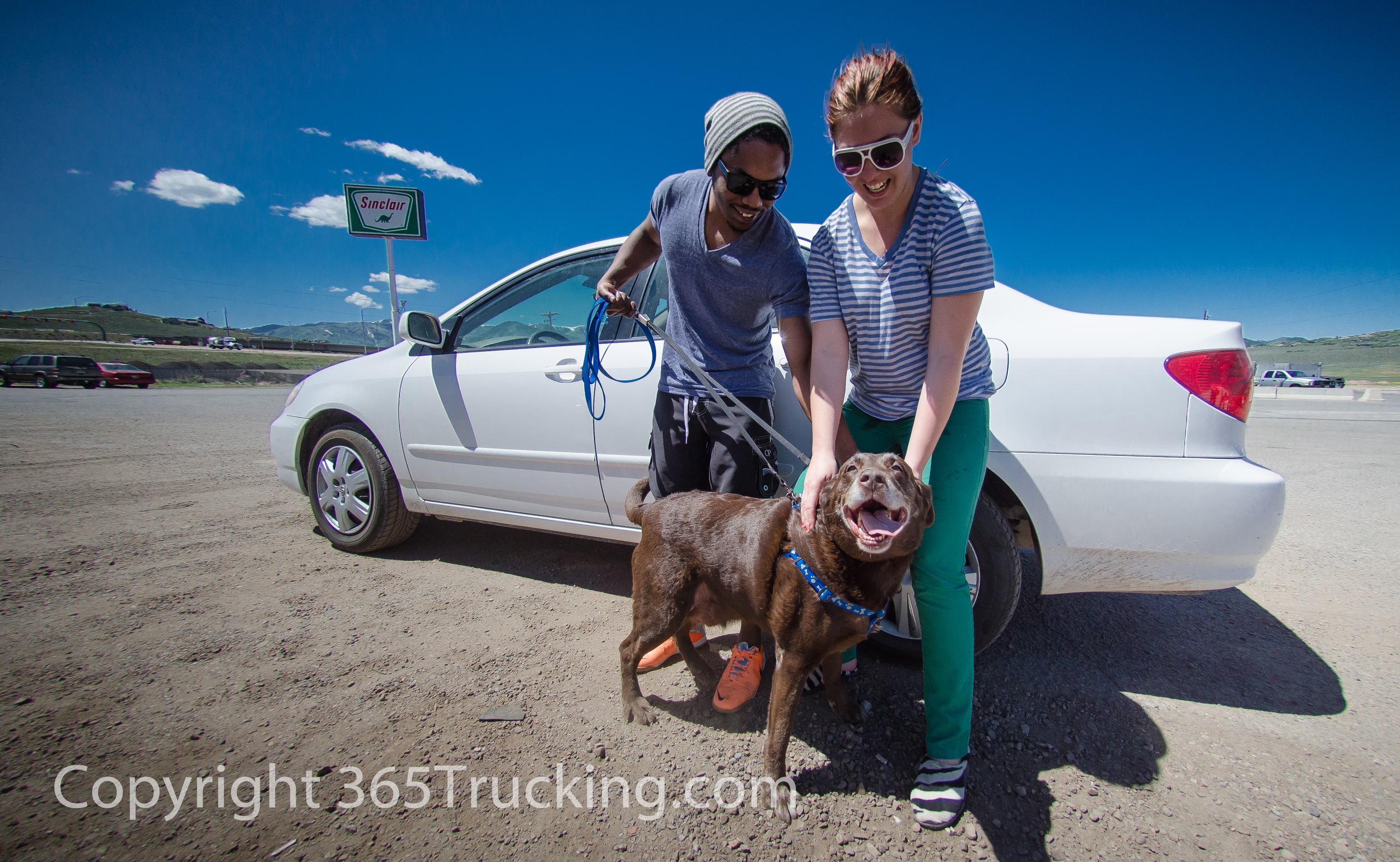 Click Here for FREE Downloads and to View All Pet Transport Photos.