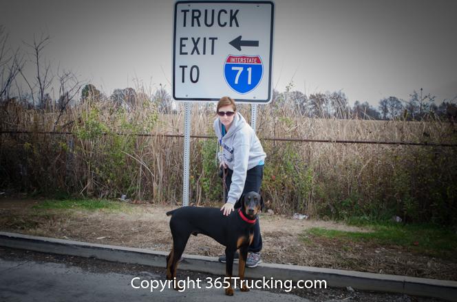 Pet_Transport_111914-33.jpg