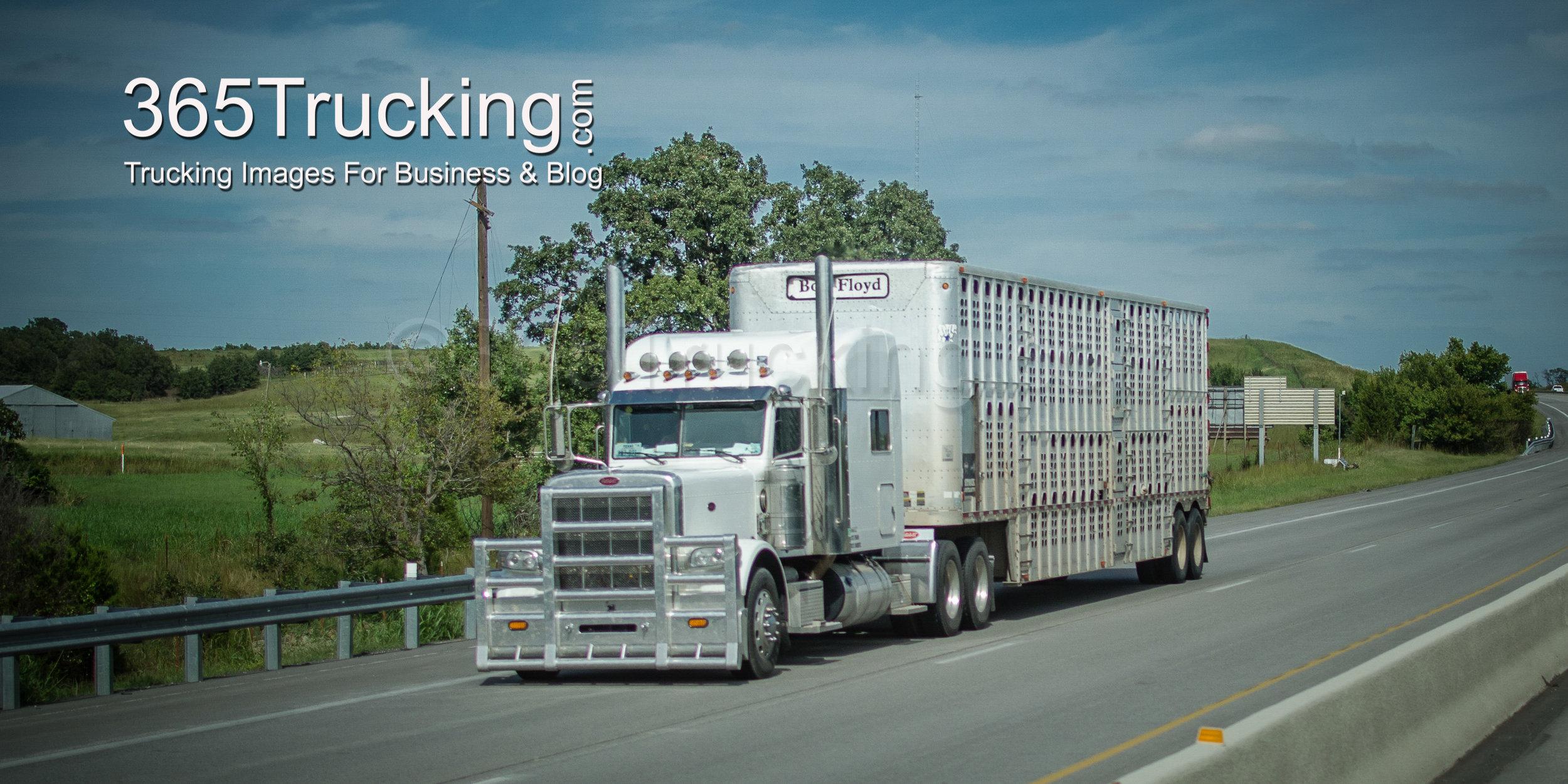Trucks_092514-1.jpg