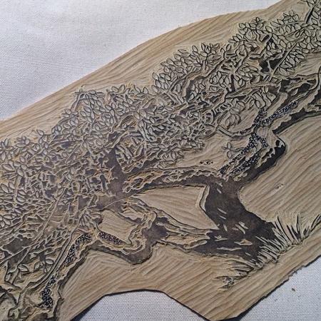 lino tree.jpg