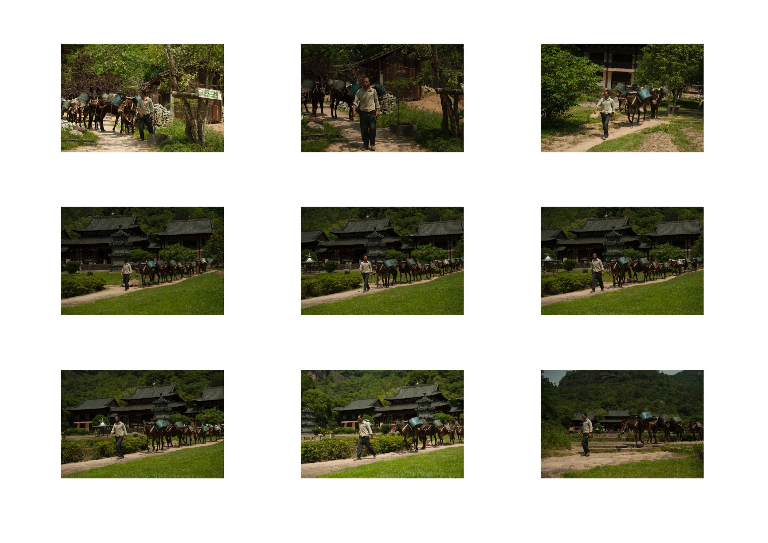 Contact sheet showing the arrival of a tea plantation worker with his mule train.