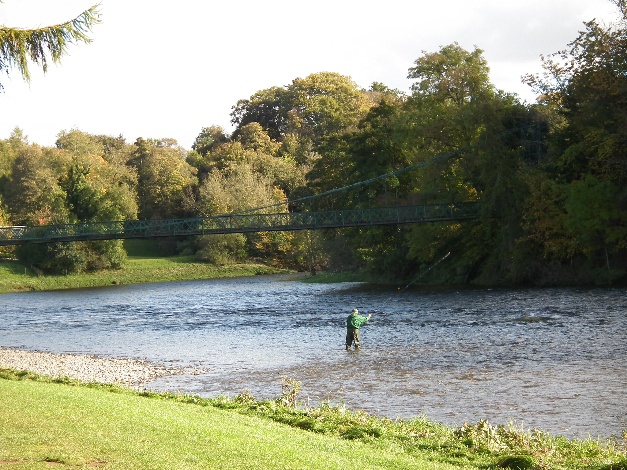 Flyfishing on the River Tweed