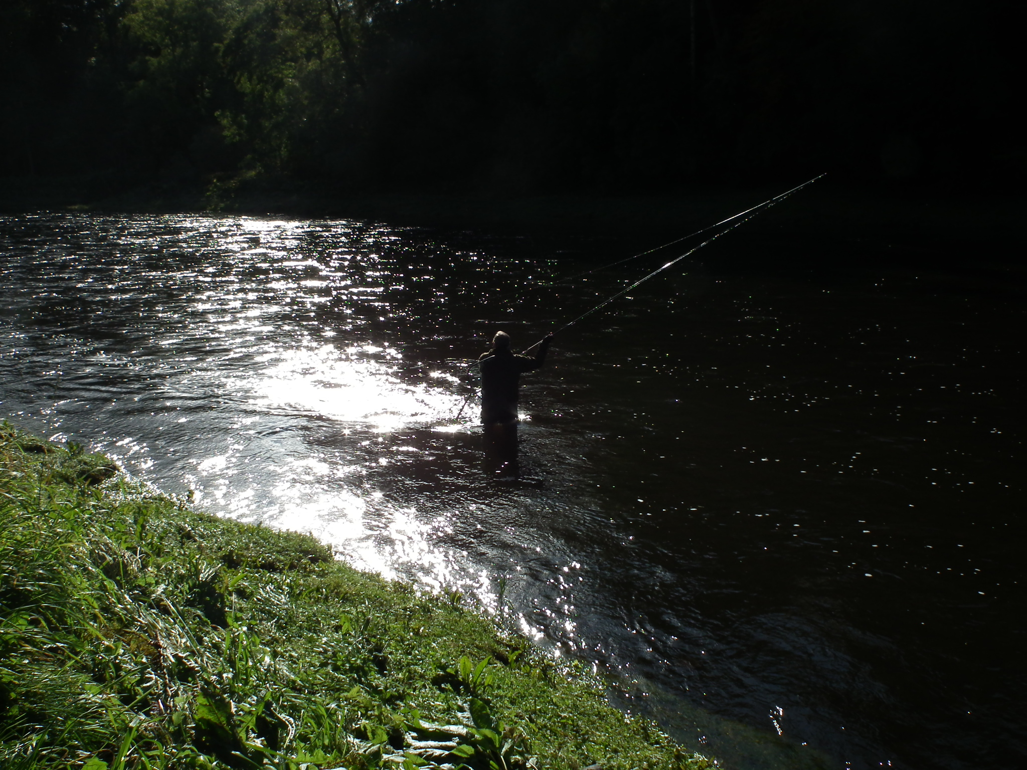 Angling on the Tweed River