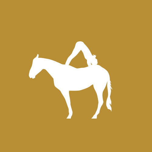 Yoga on Horses
