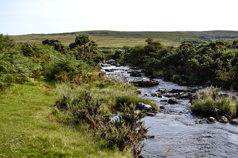 river through moor.jpg