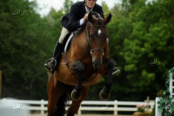 equestrian man jumping.jpg