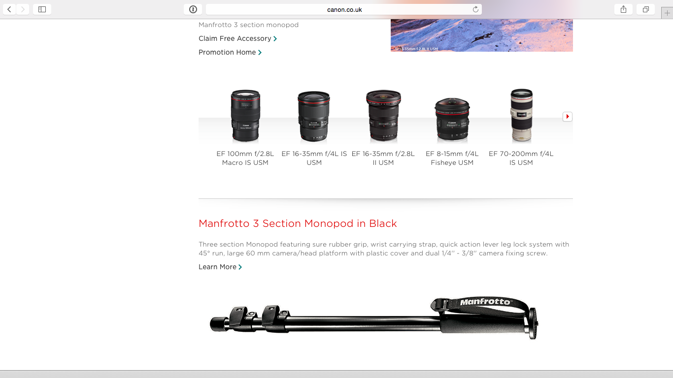 Quite a few lenses were being offered a Manfrotto monopod