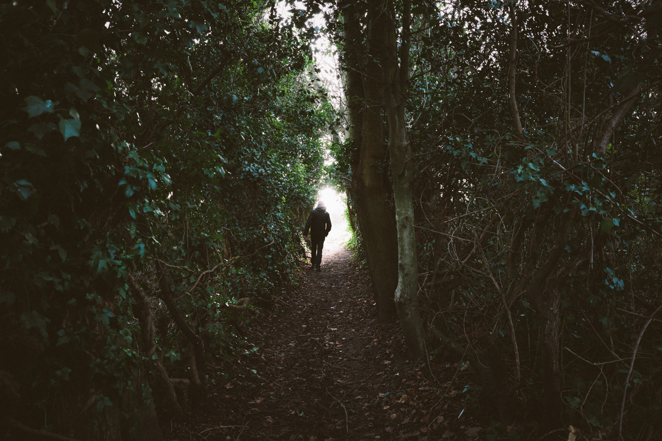 Heading through to the meadow, Great Malvern