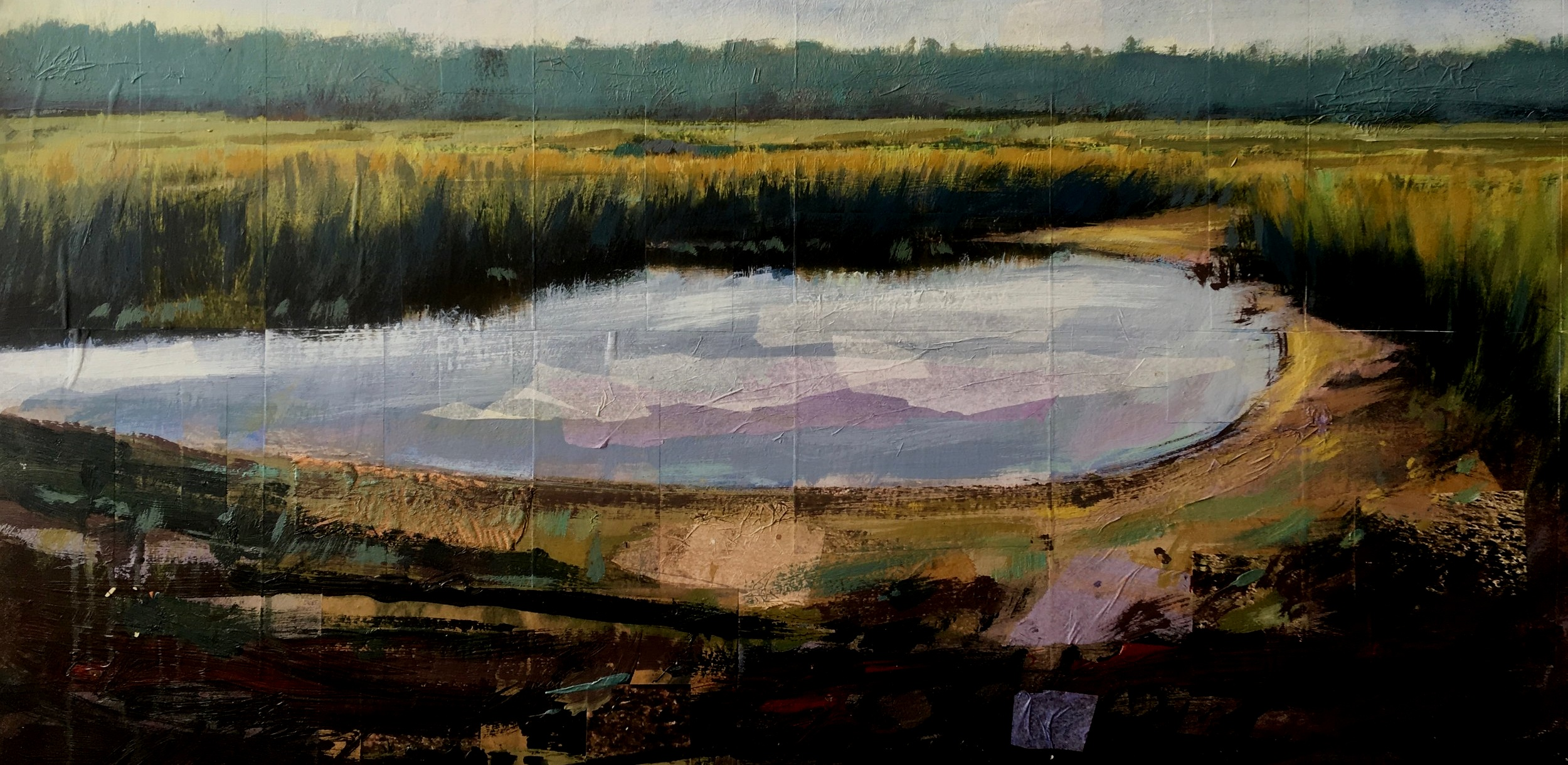 Tim Tolman Wesport Salt Water Pond