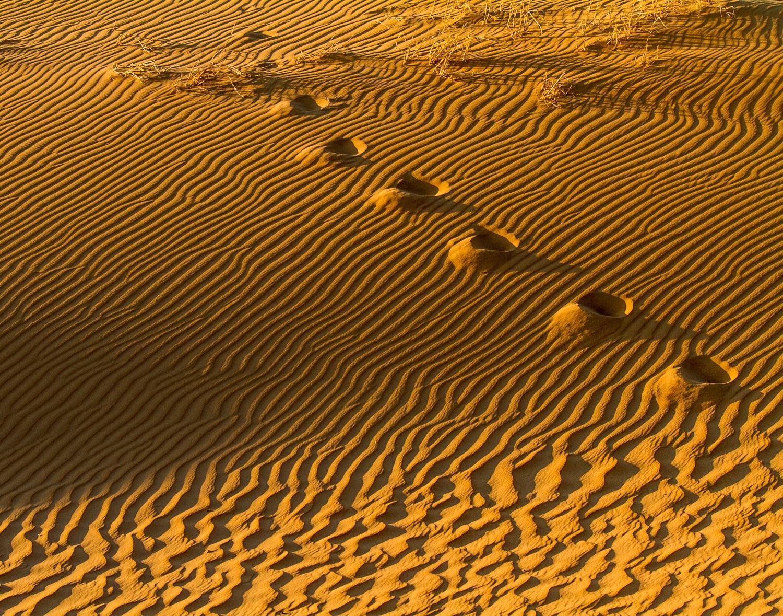Sands of time, footprints