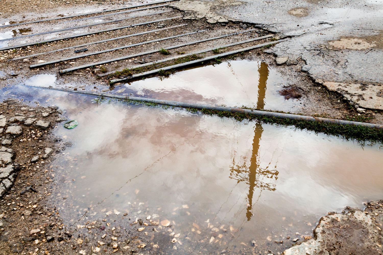 Hersey Sugar Cane Plantation, Rain Reflection