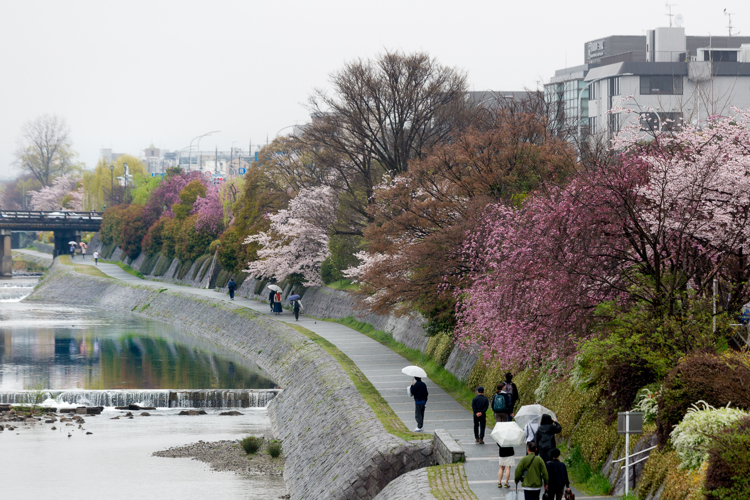 scenes-from-japan-kyoto