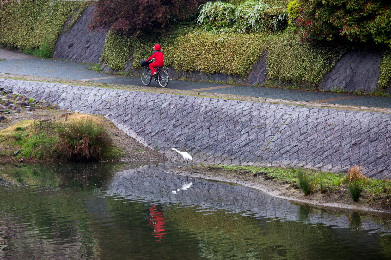 bike-rider-japan-kyoto