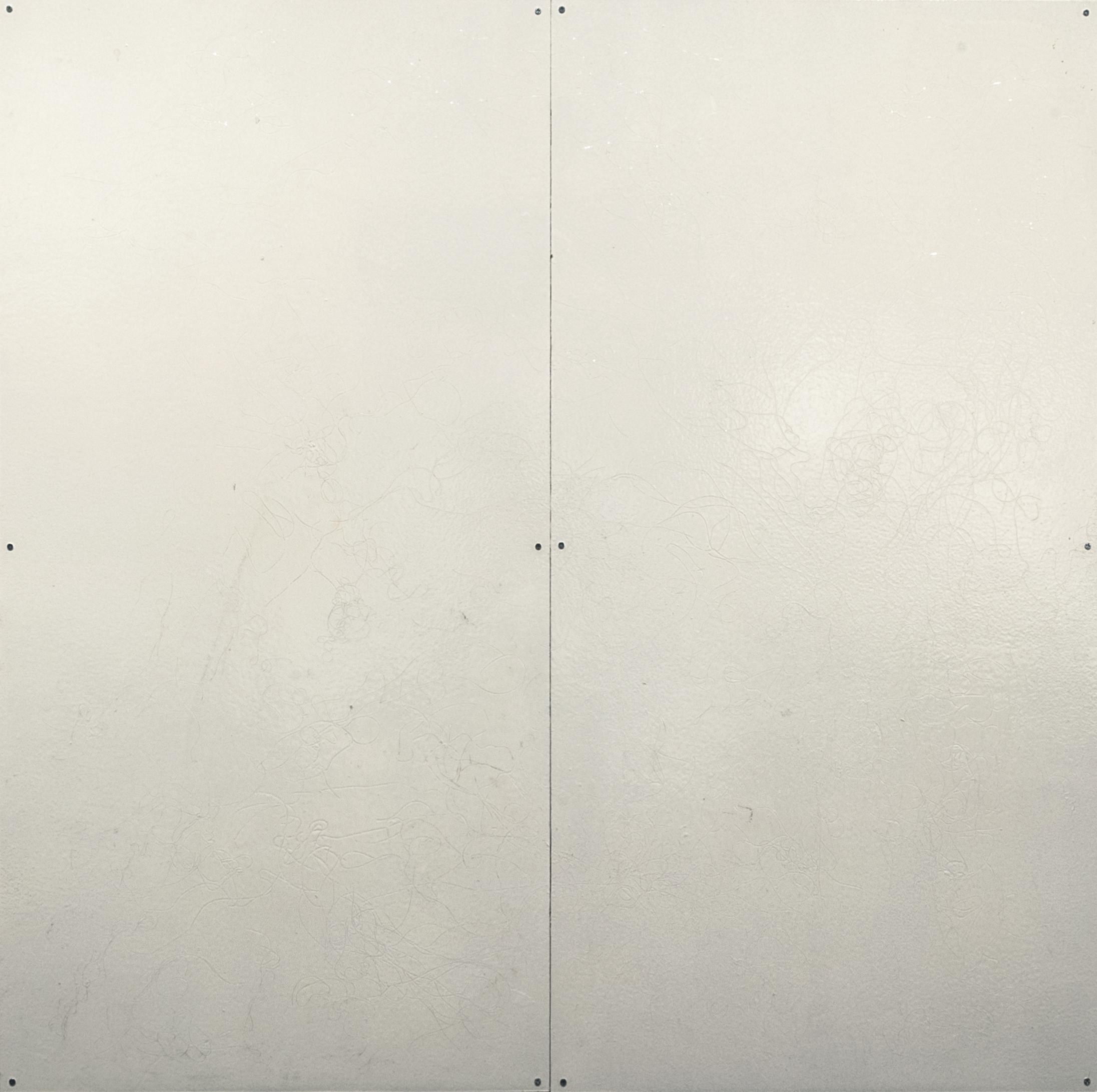 2018 48x48 whiteboard hair outline.jpg