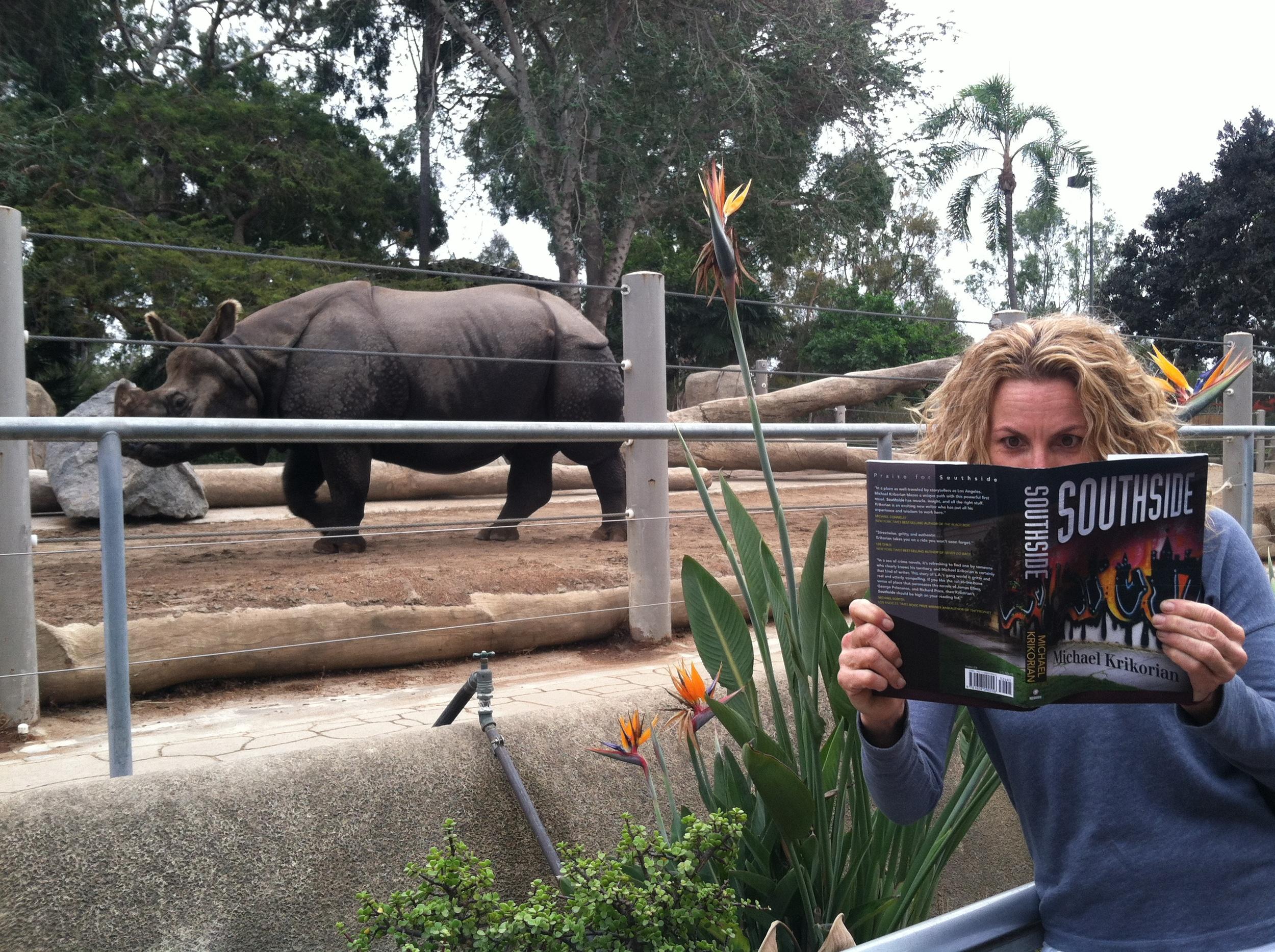 Zoo visitorignores Calcutta Slim