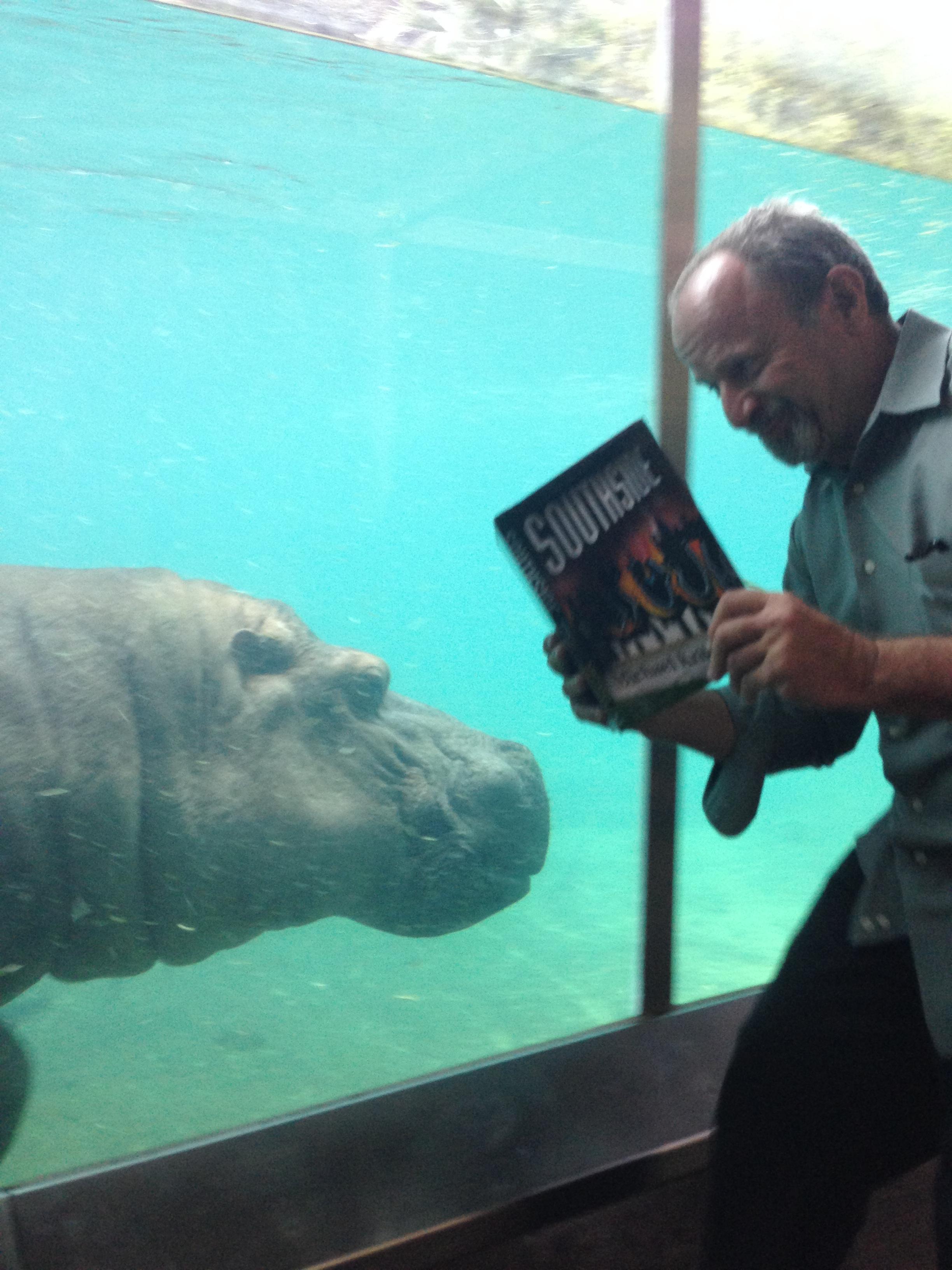 SS Hippo.jpg