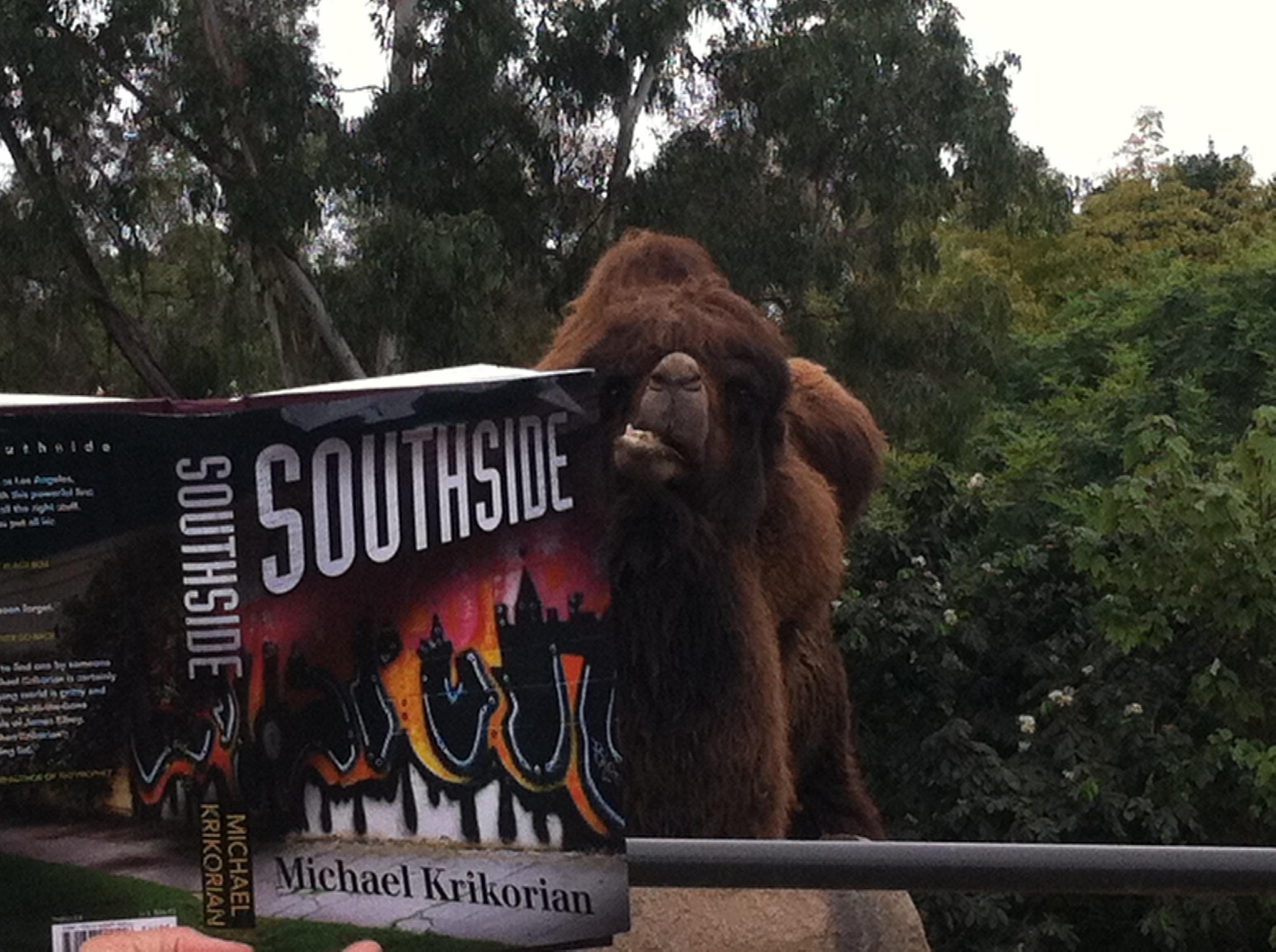Mongo reads the Krikorian thriller