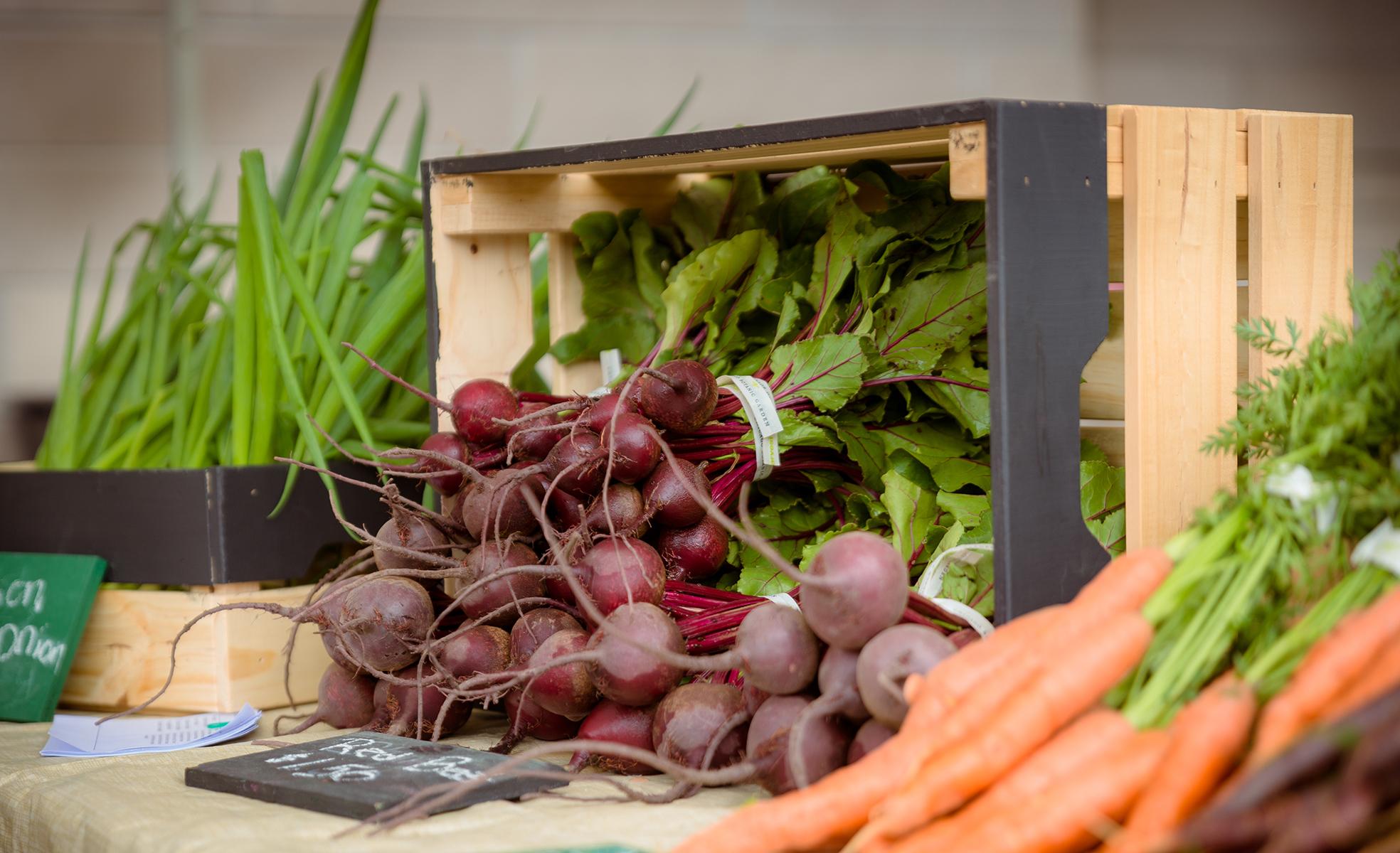 farmers_market_carrots_radishes.jpg