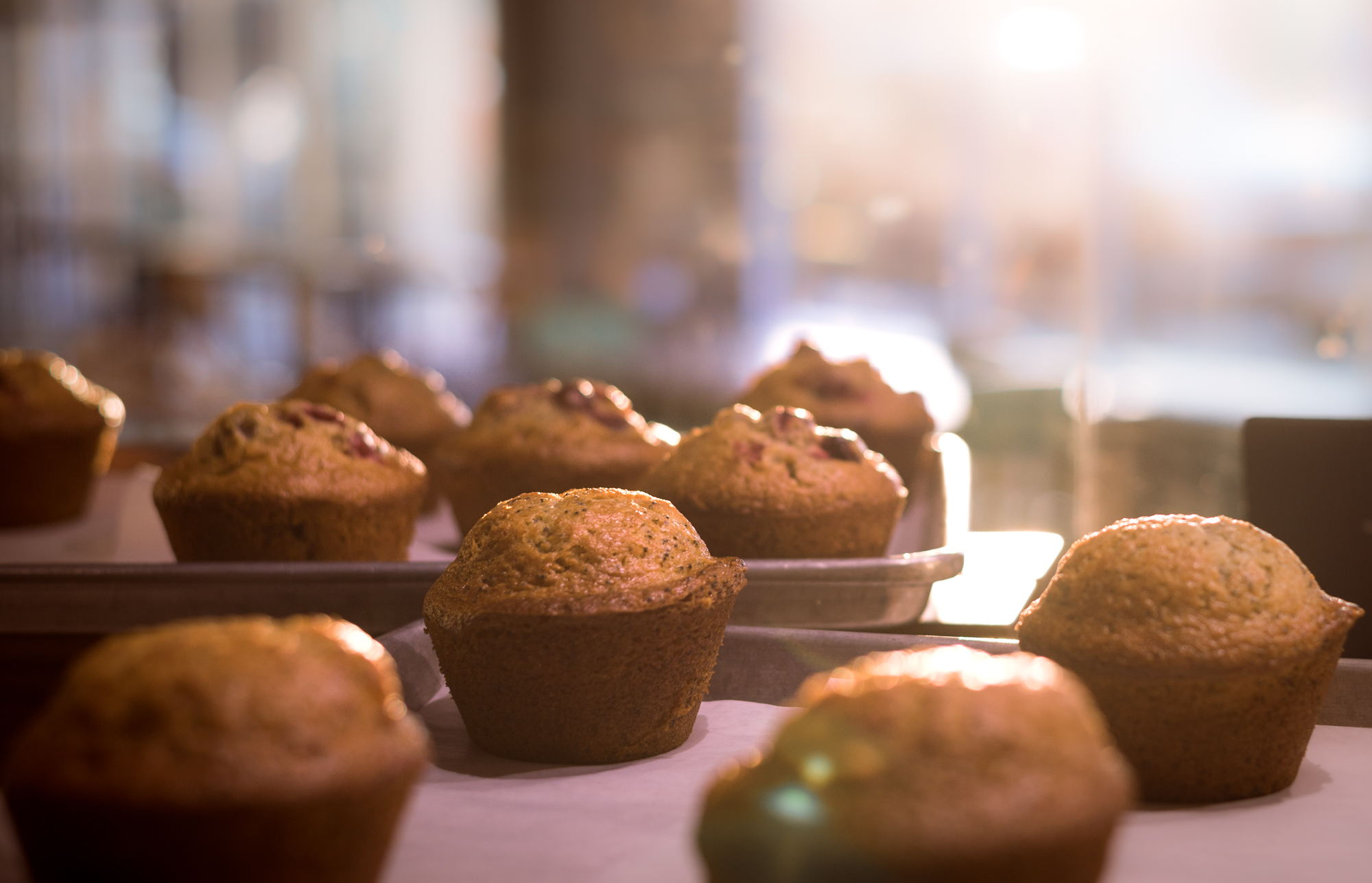 Cranberry and Lemon Poppyseed muffins