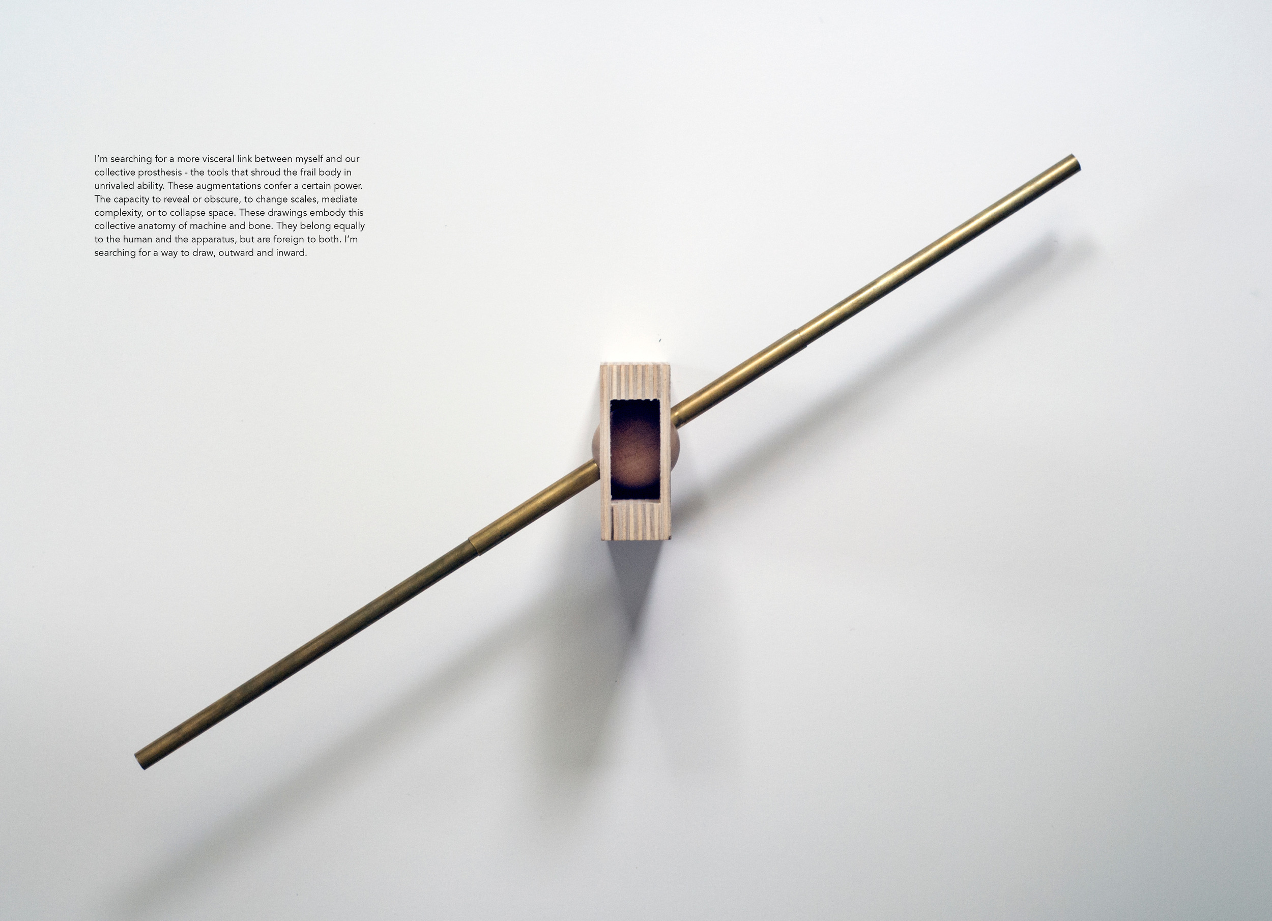 Prosthesis - RISD MArch Thesis - Burgess Voshell16.jpg