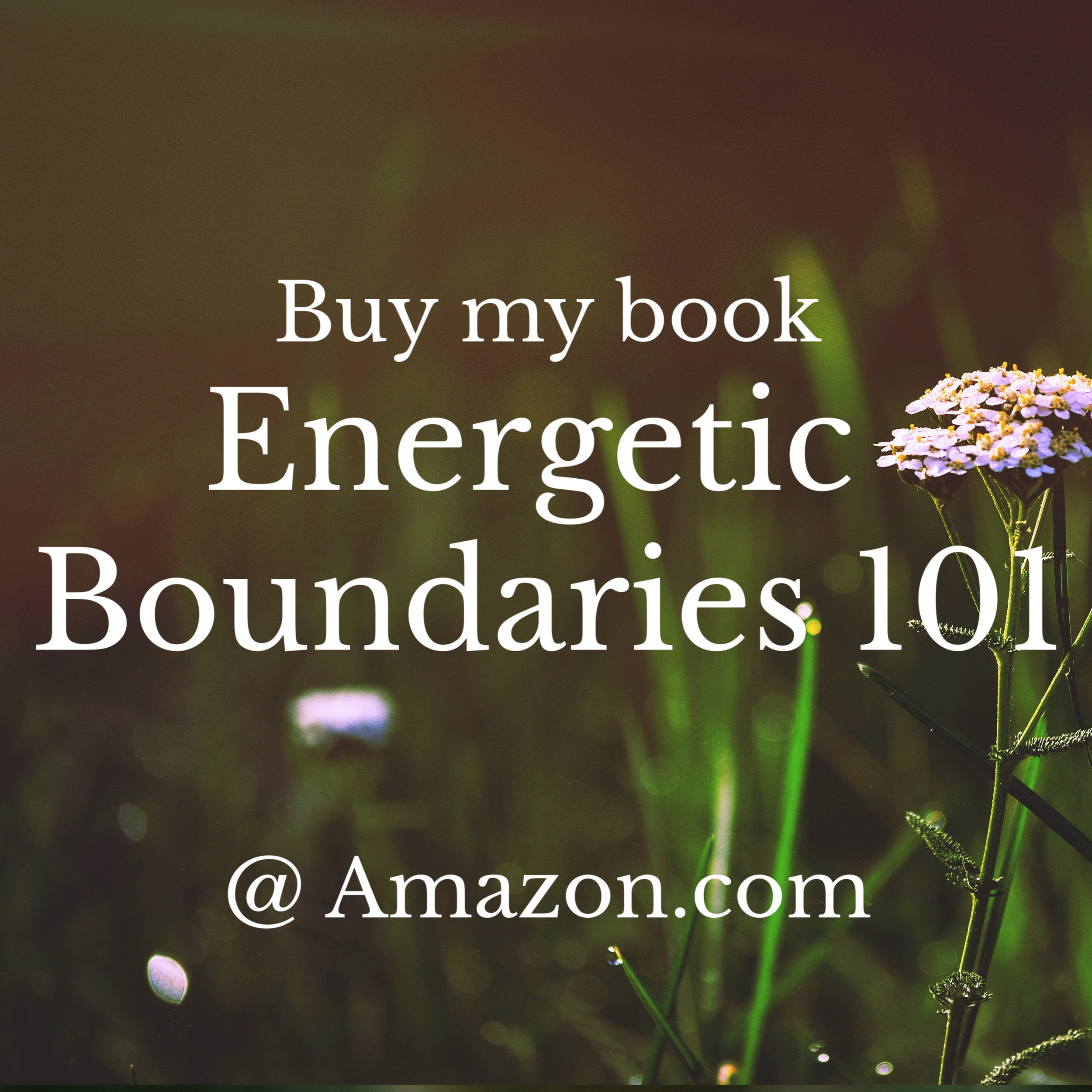 A lovely starting place for our work together. My book, Energetic Boundaries 101, will give you a beautiful (and playful) foundation to energetic preventive care.  Find it on Amazon as a print or e-book.