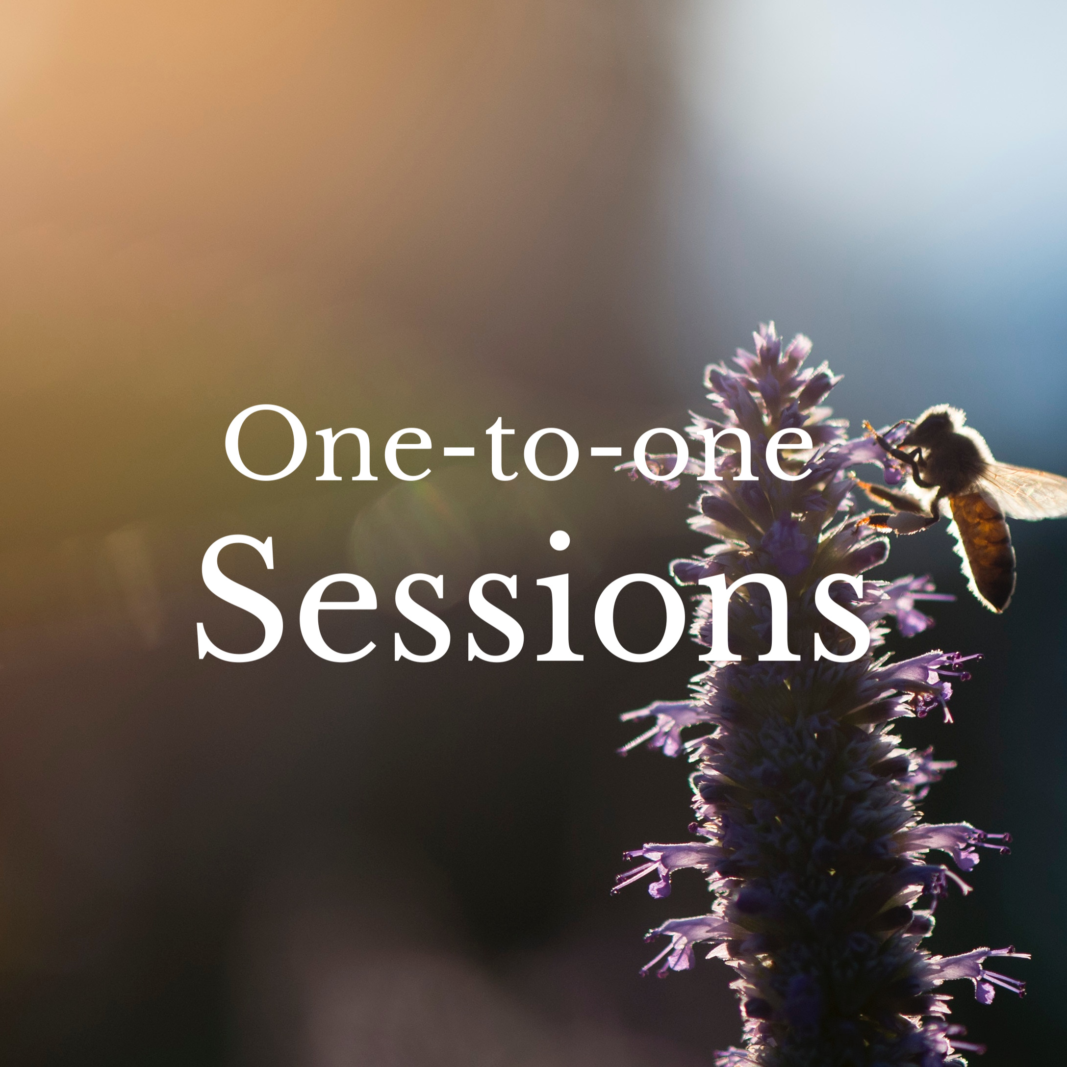 Sessions help you fill your energetic tool kit, check for energetic blind spots to help you stay in great energetic shape.  I recommend sessions every 4-6 weeks. Offered at my office and over zoom video.
