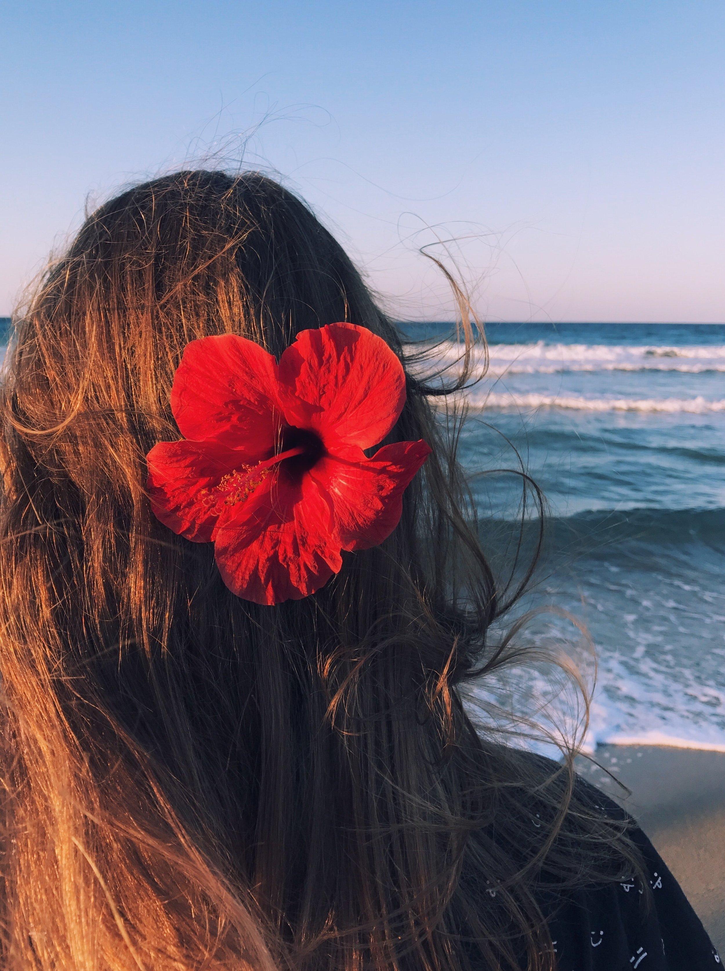 back-view-beach-beautiful-812945.jpg
