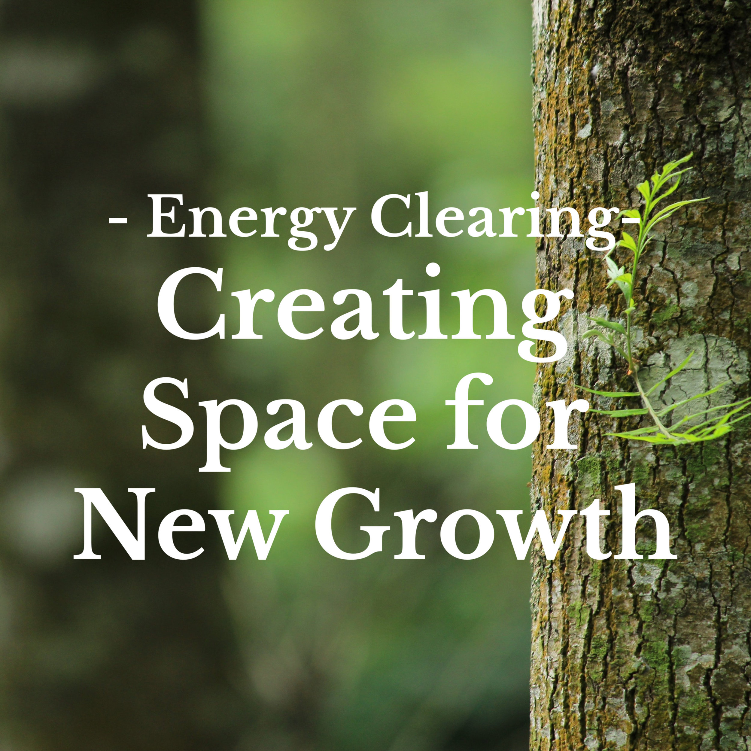 Clearing and transforming that which you have outgrown to create space for new growth, new learning and personal evolution