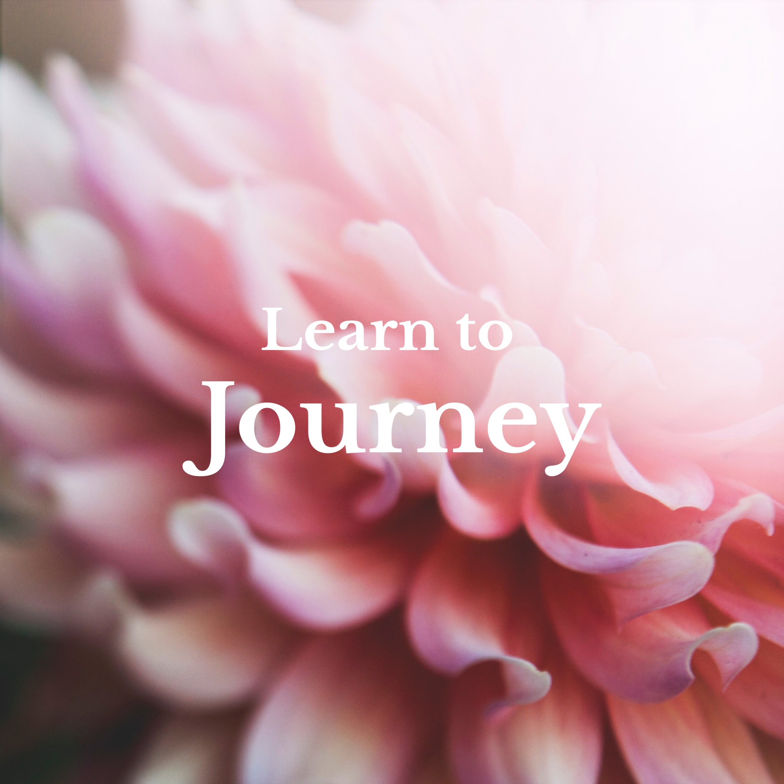 Learn to journey to your heart-center to meet and work with your allies of Spirit and Earth