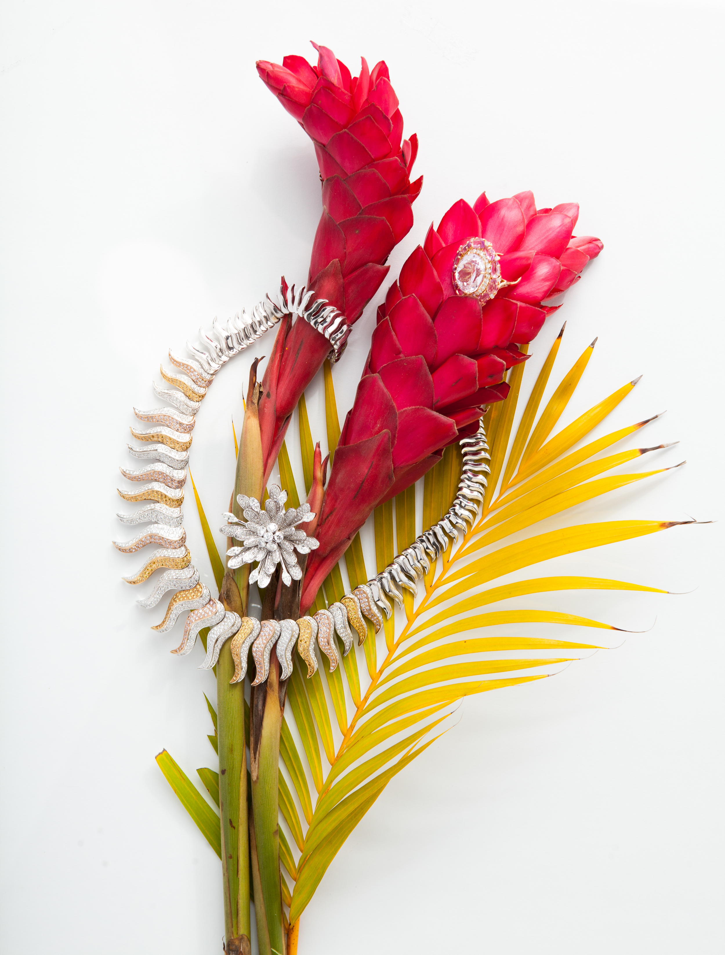 tropical_plants_lux_jewelry_naples_illustrated_vanessa_rogers_photography