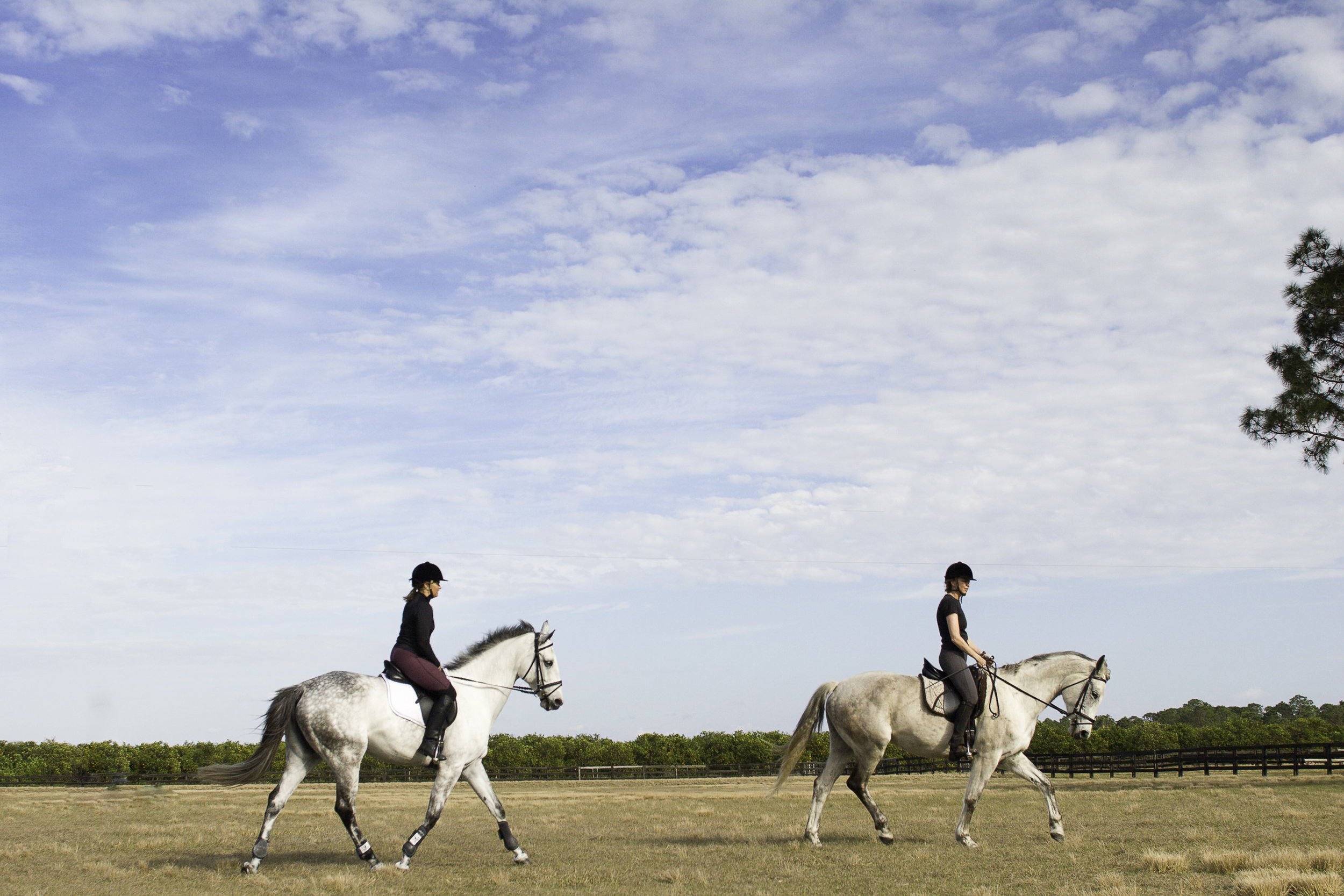 women_riding_horses_MG_0827_2.jpg