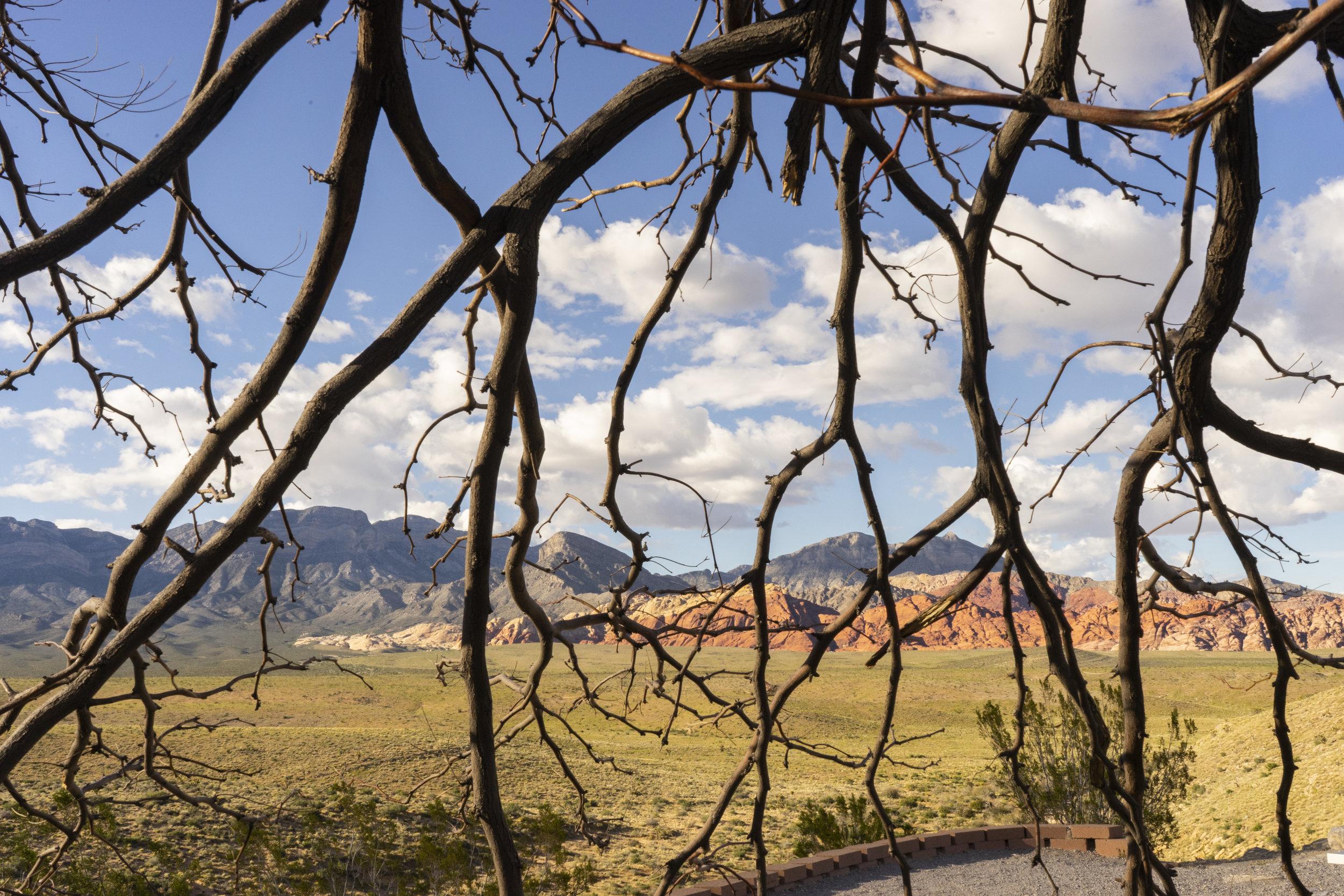 Red Rock National Park, Las Vegas Nevada 2019