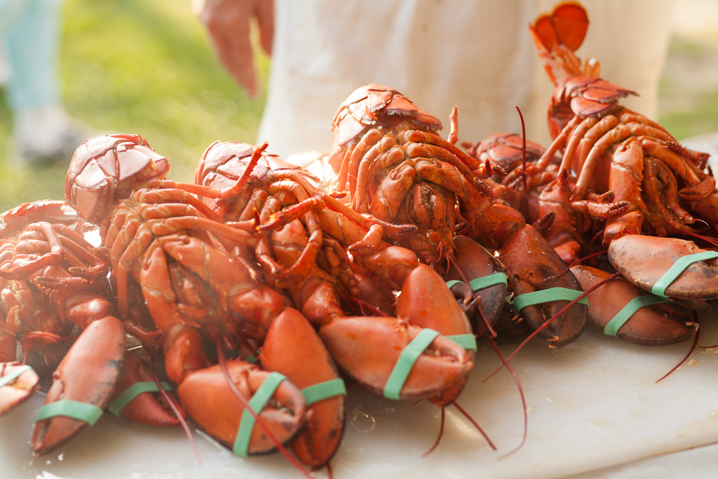 Lobsterfest for The Suffolk Times