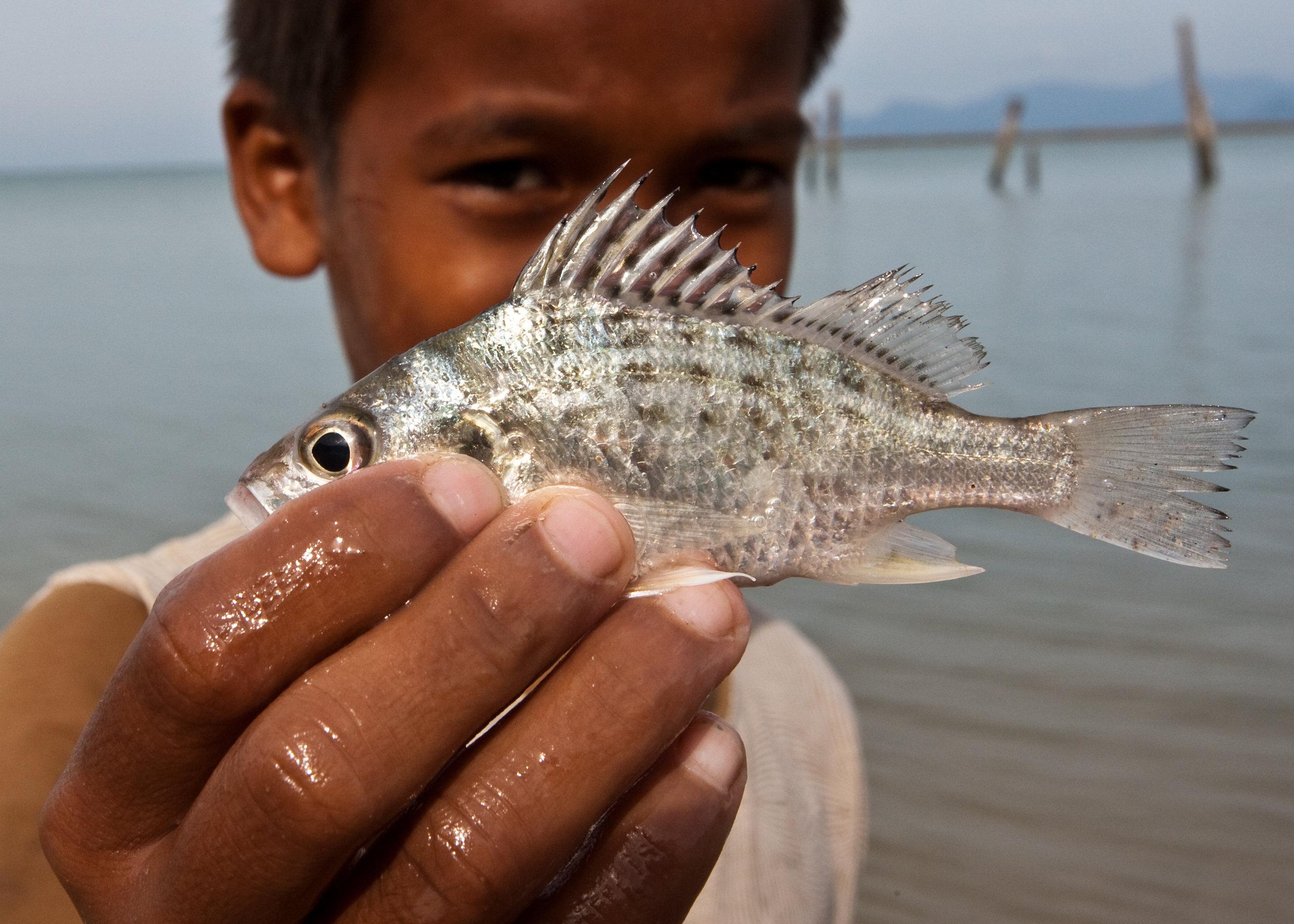 KIZR-FishBoy.jpg