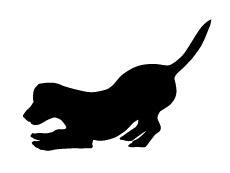 dog silhouette low staring at floor.jpg