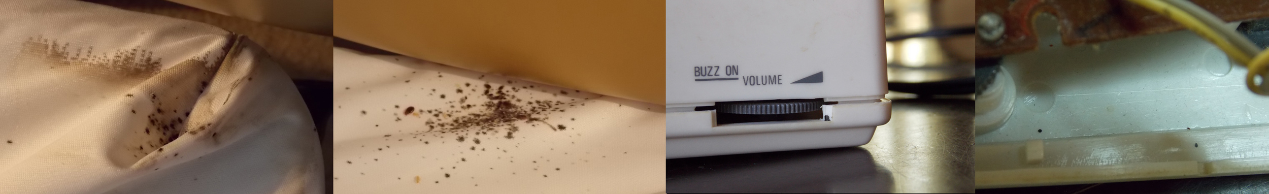 From left to right:  1. and 2. bed bug fecal spotting on fitted sheet at head of bed; 3. clock radio volume conrol served as an egress point for bed bugs, note the one fecal spot on bottom right; 4. two fecal spots on inside of clock radio.
