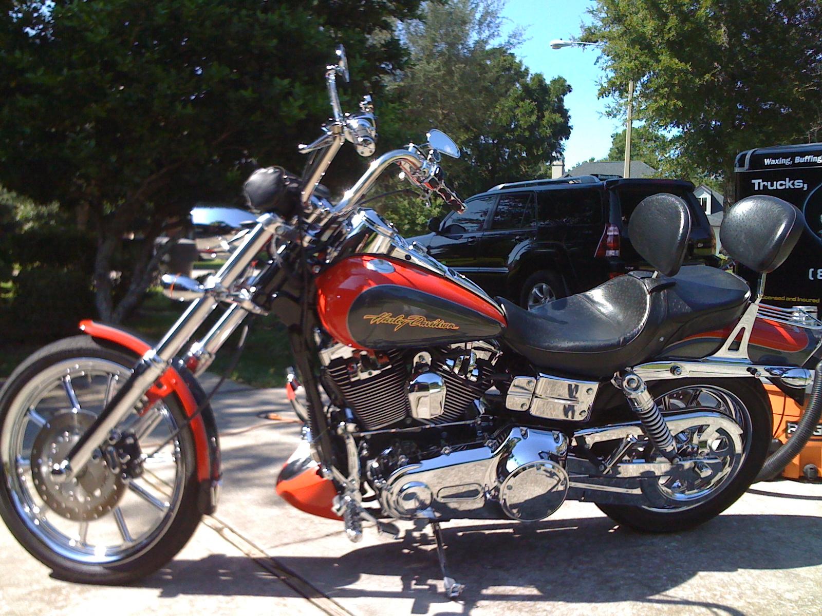 Harleydetail.JPG