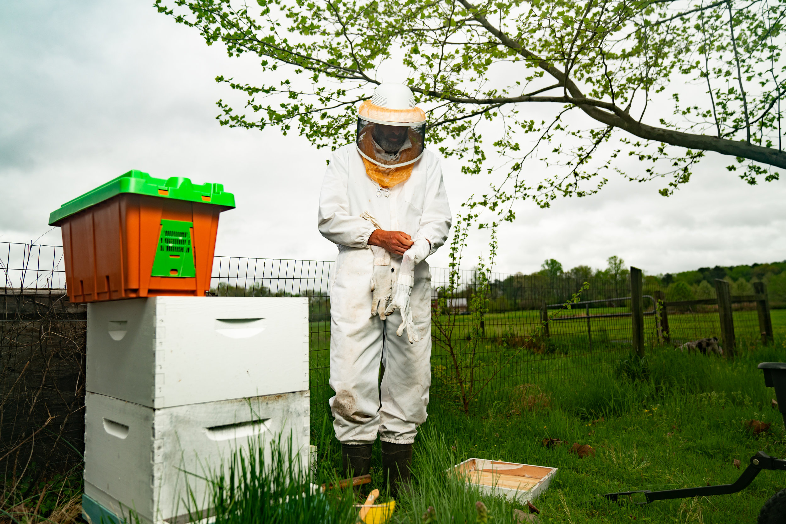 BeeKeeper_George-13.jpg