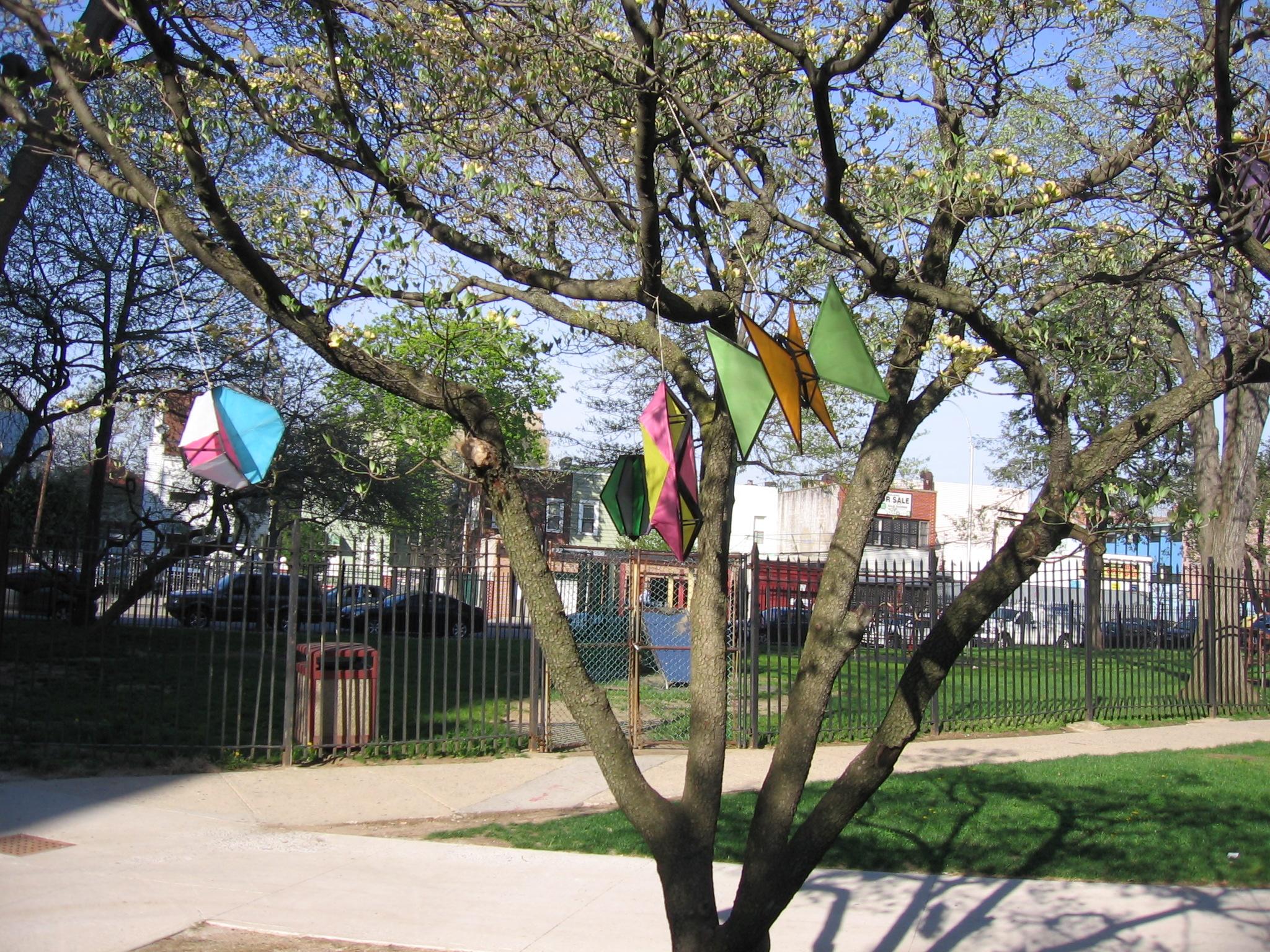 Tree Kites