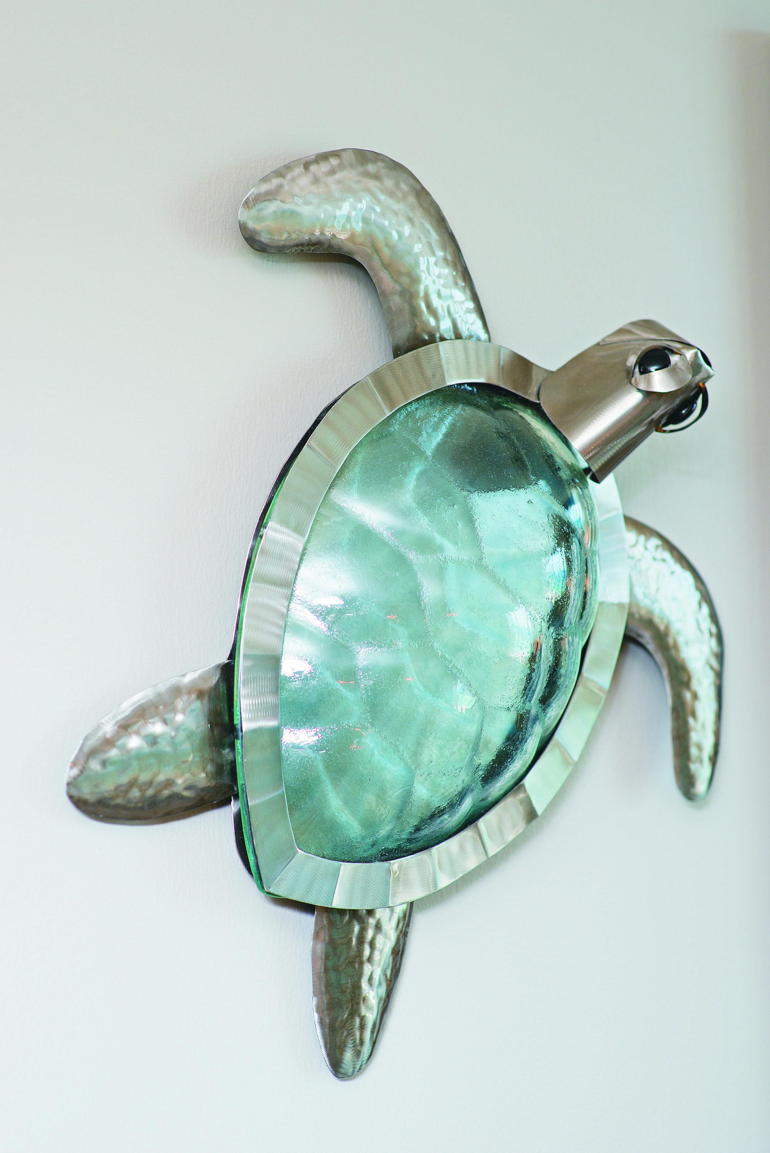 rsz_turtle.jpg